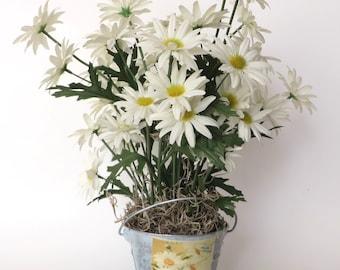Sweet Daisies in a Tin Bucket