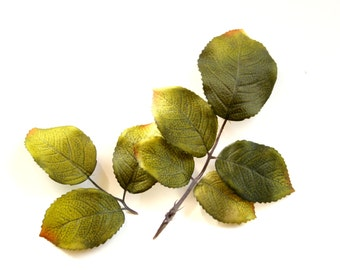 55 Rose Leaves - Recycled Floral