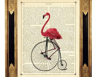 Art Print Flamingo riding Bike Unicycle Penny Farthing Bicycle - Vintage Victorian Book Page Art Print Steampunk Pink Flamingo