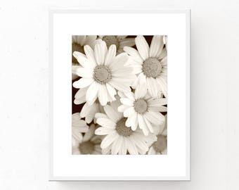 Sepia Print - Sepia Flowers Daisies, Sepia Photo Download, Instant Download, Printable Wall Art, Sepia Wall Art, Sepia Daisy, Printable