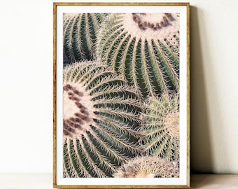 Cactus digital download art, south western cactus wall decor, printable cactus wall art, photography, vintage cactus wall art poser