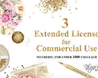 Package of Three Extended Licenses for Commercial Use   Discount Package