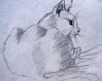 Chat ACEO imprimé d'un dessin original de mon édition ouverte pour animaux de compagnie