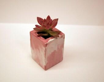 Small concrete pot modern for succulent or cactus