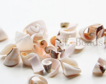 40 Pieces of  Shell Beads (T-194)