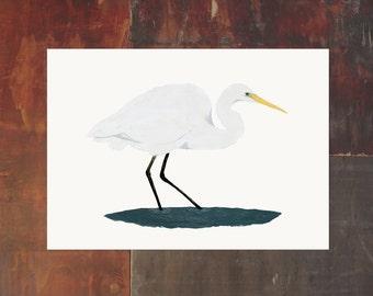 New Zealand Bird Archival Art Print - Kotuku White Heron