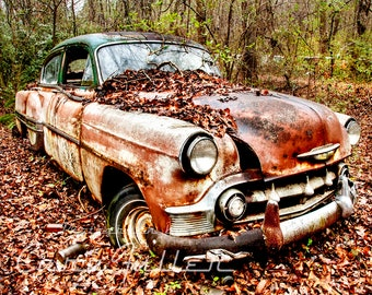 1953 Chevy sedan with a green roof in the Woods Photograph