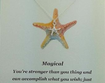 Silver fish star