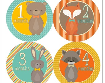 Little Woodlands Baby Monthly Stickers