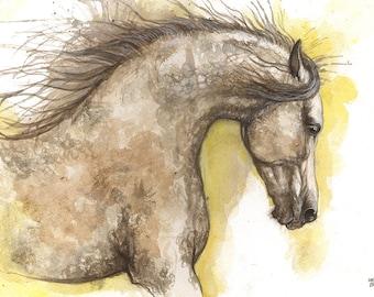 Arabian horse, equine art, horse portrait, equestrian, original watercolor painting