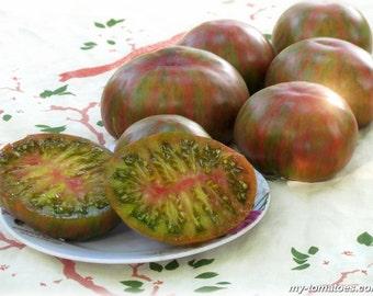 Green Copia Tomato - Gourmet Heirloom seeds
