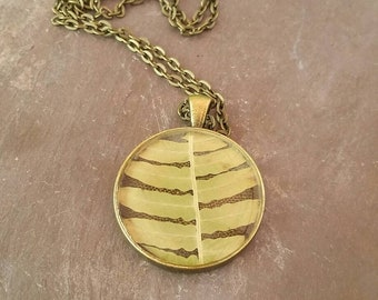 Real fern necklace - fern pendant - woodland jewelry - Resin jewelry - botanical necklace - fern gifts