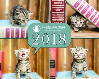 2018 Alley Cats and Angels Calendar