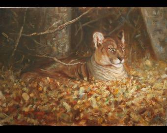 Cougar Study (original oil painting)
