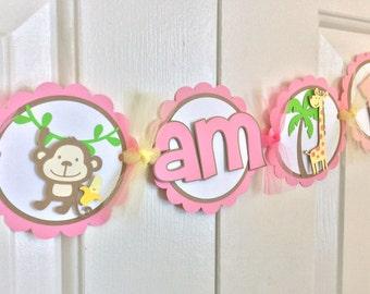 Monkey Banner- Pink