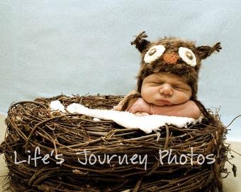 Baby Hat, Knit Newborn Hat, Baby Photo Prop, Newborn Photo Prop, Photography Props, Owl Hat