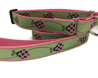 Dog Collar and Leash, Ladybug, 6ft leash, 1 inch wide, adjustable, quick release, metal buckle, chain, martingale, hybrid, nylon