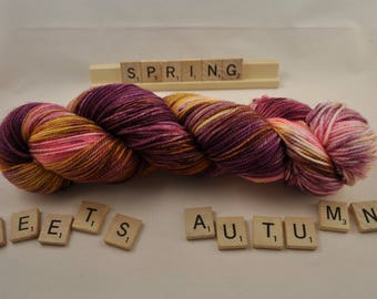 """Hand-dyed yarn, """"Spring Meets Autumn"""", variegated, soft and squishy yarn. Great for socks or shawls. 80/20 Superwash wool/Nylon"""