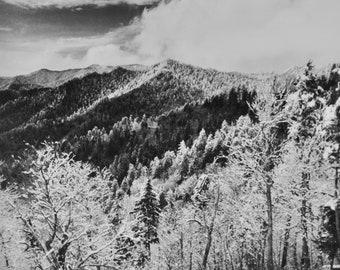 Smokey Mountain National Park Silver Image Print