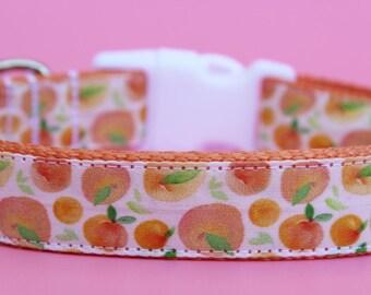 """Summer Dog Collar 1"""" Peach Dog Collar"""