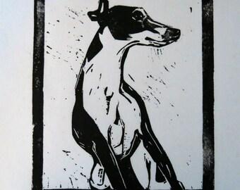BirdsforBirds Leaning Greyhound art block print