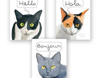 International Cat Hello Card Set of 12