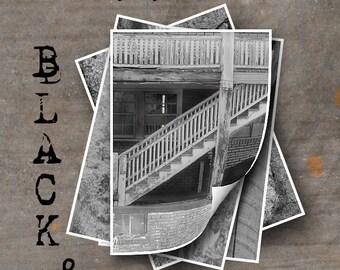 LETTER Z Alphabet Photography LETTERS - Black and White Alphabet Photos