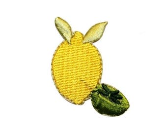 ID 1210A Lemon With Lime Patch Summer Lemonade Embroidered Iron On Applique