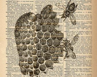 Dictionary Art Print - Bees in Honeycomb - Upcycled Vintage Dictionary Page Poster Print - Size 8x10
