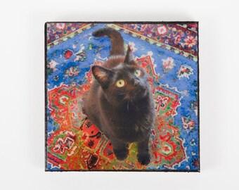 Refrigerator Magnet, Black Cat Art, Handmade, Fridge Magnets, Kitchen Magnets, Cat Lover Gift, Deborah Julian