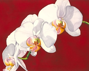 Watercolor painting...BREATHTAKING...orchids...giclee