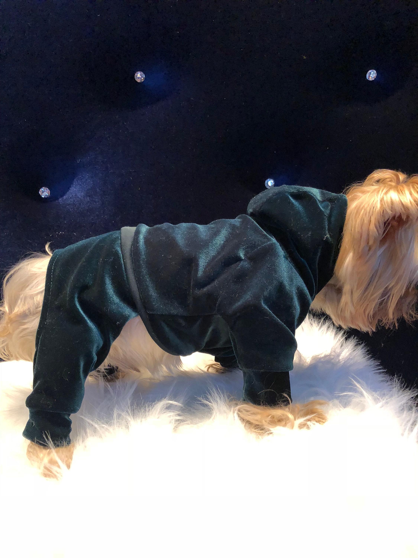 Vert velours Sweat chien / chiot Sweat velours à capuche ou combinaison 0db0ff