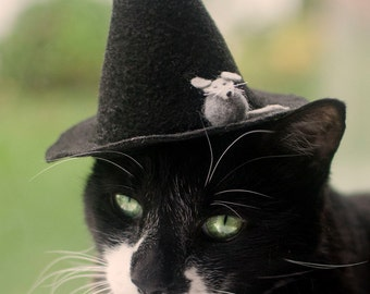 Salem Witch Hat for Cats