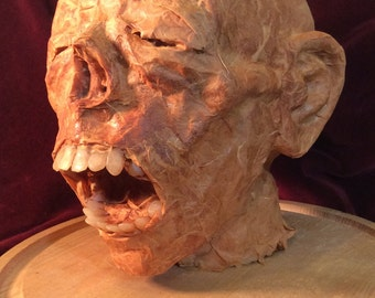 Head of the Mummy Baraka II