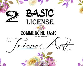 Two Basic Commercial Licenses Bundle for Commercial Use of Patterns, Clip arts, Graphic Digital Paper Discount Package TriaraArt