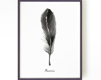 Feather Art, Feather Print, Feather Watercolor Painting, Black and White Art, Bedroom Art, Minimalist Art, Modern Wall Art, Feather RECTRIX