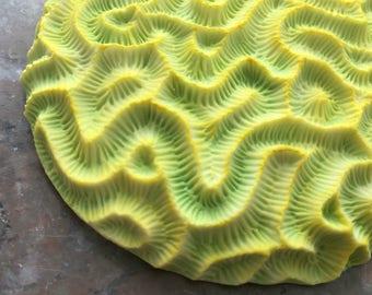 Chartreuse round brain coral porcelain wall sculpture tile