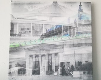 "Chicago 13"" Canvas Wall Art - Shedd Aquarium Photo Collage"