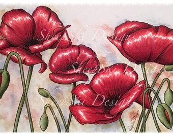 Poppies - image no 116