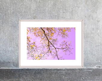 Nature Photography, Foliage Tree Print, Gold Purple Wall Art, Modern Decor, Landscape, Abstract Art, Sky Print