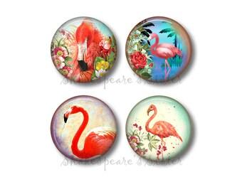 Flamingo Kitchen - Fridge Magnets - Flamingo Magnets - 4 Magnets - 1.5 Inch Magnets - Kitchen Magnets