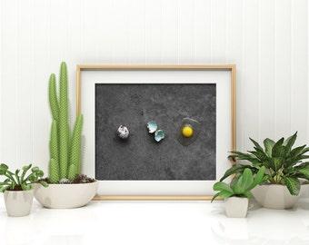 quail egg v. three // food photography print // kitchen decor // kitchen wall art  // dining room wall art // rustic wall art // egg print