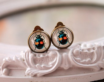 Insect bug clip earrings sweet lolita feminine  insect bug blue yellow nature