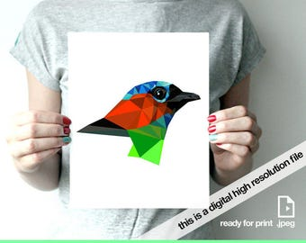 Red bird print bird geometric bird illustration bird art print bird modern woodland instant download digital print Saira