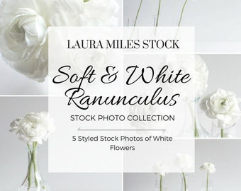 Flower Stock Photo / White Flowers in Vase / Styled Stock Photography / Social Media Photo / Digital Background / Stock Photo Collection