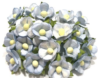 Pale Blue Mulberry Paper Sweetheart Blossoms Bl012