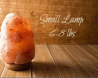 Himalayan Salt Lamp Carved Ionizer Lamp Small 6 8 Lb SHIPS FREE!