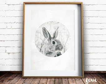 Rabbit Print, Woodland Animals Print, Rabbit Photo, Woodlands Print, Bunny Print, Black and White Animal Print, Nursery Print, Printable Art