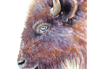 Print Buffalo in Watercolor // Painting,artwork,travel,nature,wildlife,animals,yellowstone,bison,native,abstract,rust,bohemian,western,aztec