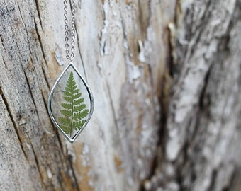 Fern     .  Mothers day gift. Terrarium necklace. Pressed fern necklace. Pressed flower jewelry. Botanical jewelry. Mother's Day necklace